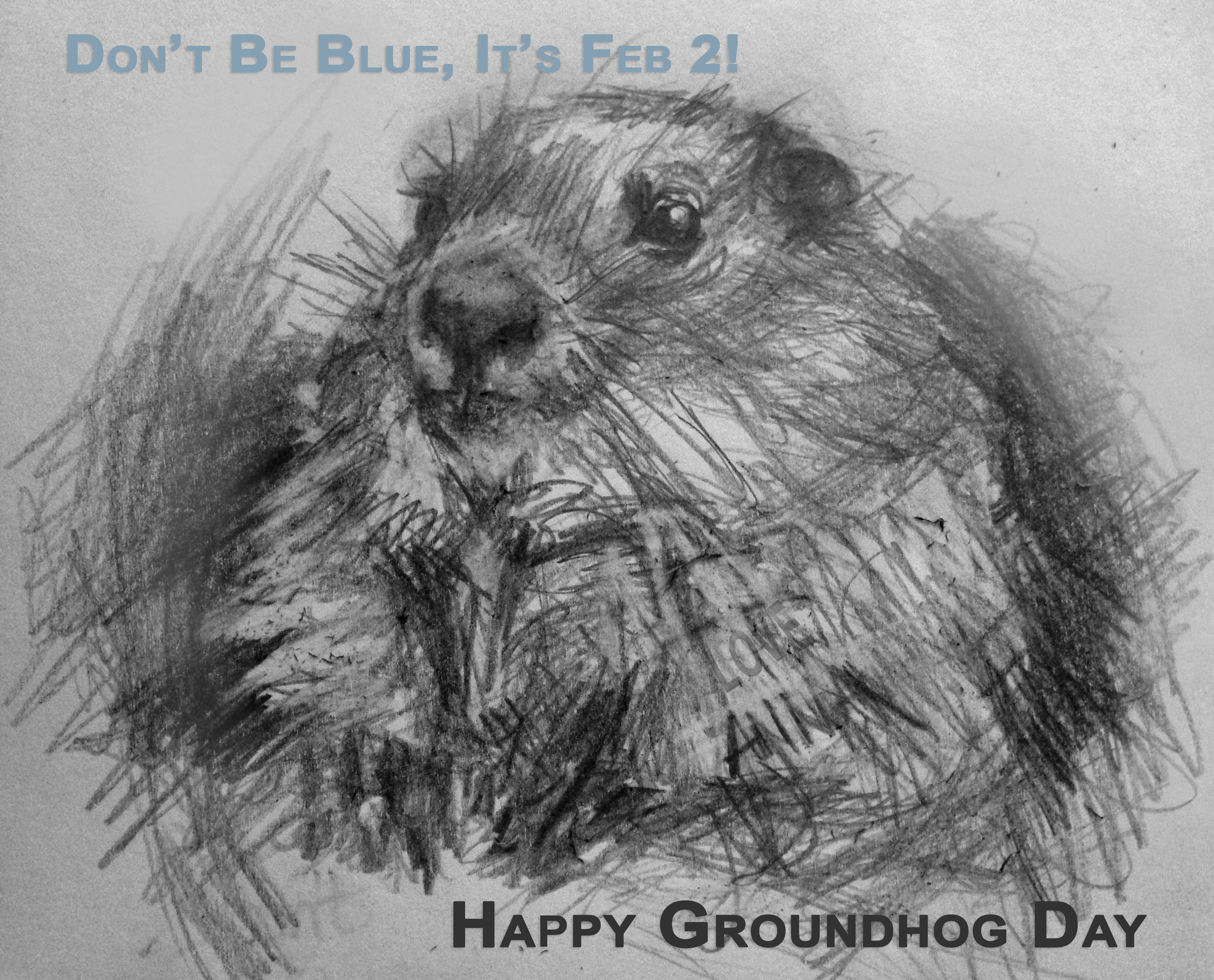 groundhog-card2015-by-Anna_Mosby_Coleman