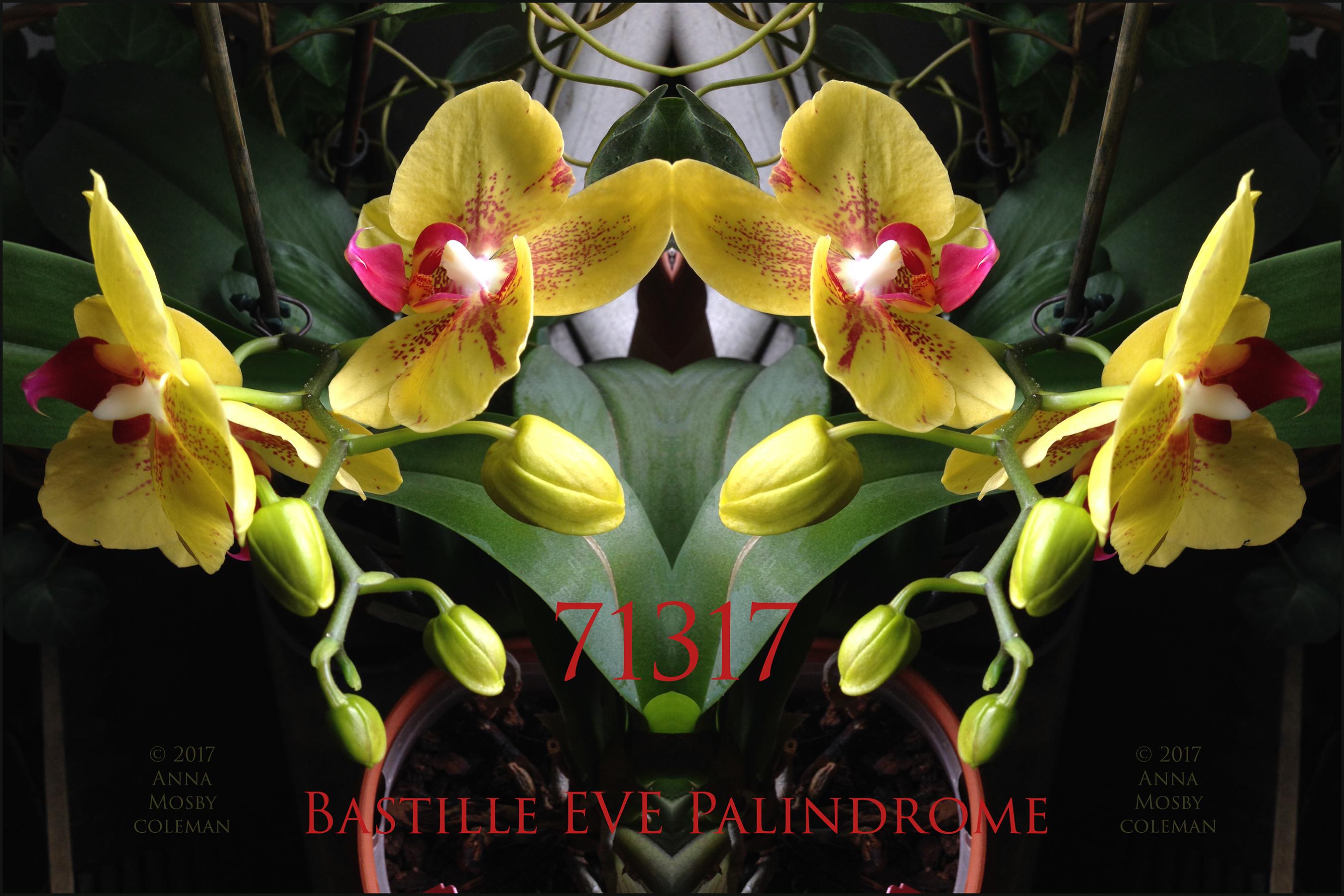 bastille-eve-71317-©AnnaMosbyColeman.jpg